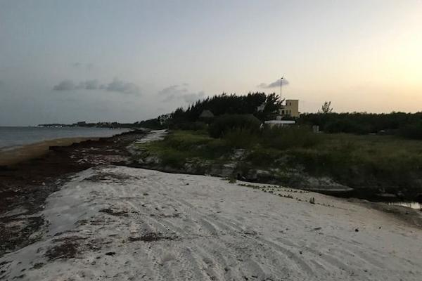 Foto de terreno habitacional en venta en  , puerto morelos, benito juárez, quintana roo, 5693182 No. 02