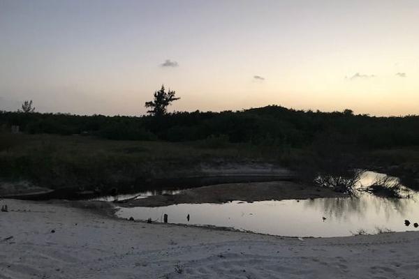 Foto de terreno habitacional en venta en  , puerto morelos, benito juárez, quintana roo, 5693182 No. 05
