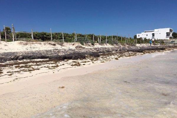 Foto de terreno habitacional en venta en  , puerto morelos, benito juárez, quintana roo, 7314175 No. 05