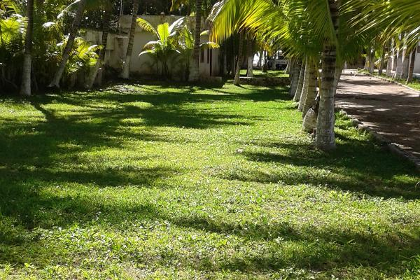 Foto de terreno comercial en venta en puerto morelos , puerto morelos, benito juárez, quintana roo, 3451631 No. 06