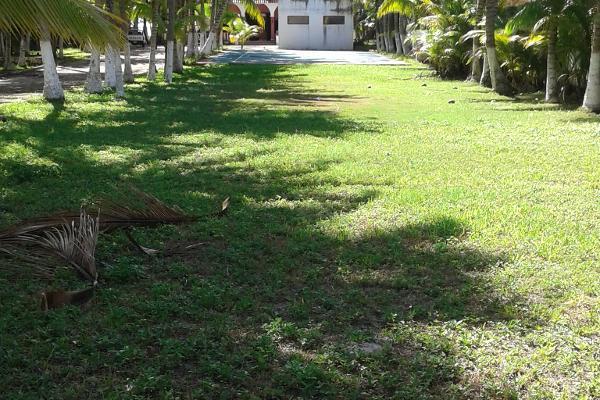 Foto de terreno comercial en venta en puerto morelos , puerto morelos, benito juárez, quintana roo, 3451631 No. 07