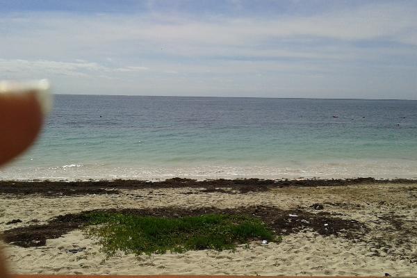 Foto de terreno comercial en venta en puerto morelos , puerto morelos, benito juárez, quintana roo, 3451631 No. 08