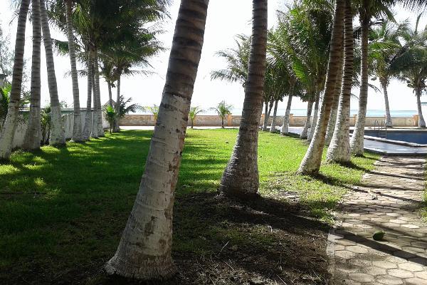Foto de terreno comercial en venta en puerto morelos , puerto morelos, benito juárez, quintana roo, 3451631 No. 09