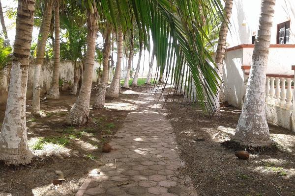 Foto de terreno comercial en venta en puerto morelos , puerto morelos, benito juárez, quintana roo, 3451631 No. 10