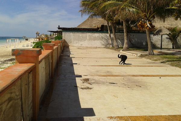 Foto de terreno comercial en venta en puerto morelos , puerto morelos, benito juárez, quintana roo, 3451631 No. 11