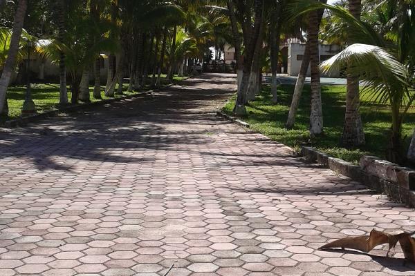 Foto de terreno comercial en venta en puerto morelos , puerto morelos, benito juárez, quintana roo, 3451631 No. 12