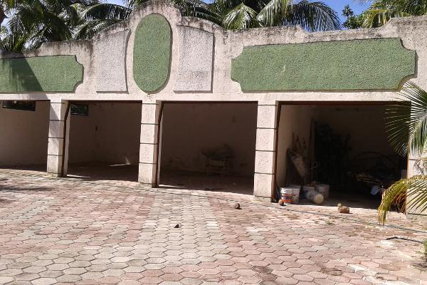 Foto de terreno comercial en venta en puerto morelos , puerto morelos, benito juárez, quintana roo, 3451631 No. 18