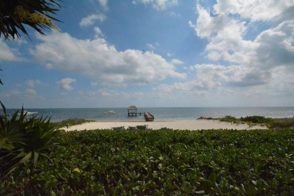 Foto de terreno habitacional en venta en  , puerto morelos, puerto morelos, quintana roo, 7165163 No. 01
