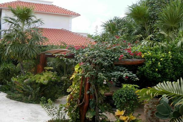 Foto de terreno habitacional en venta en  , puerto morelos, puerto morelos, quintana roo, 7165163 No. 46