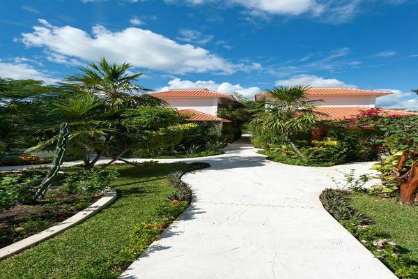 Foto de terreno habitacional en venta en  , puerto morelos, puerto morelos, quintana roo, 7165163 No. 51