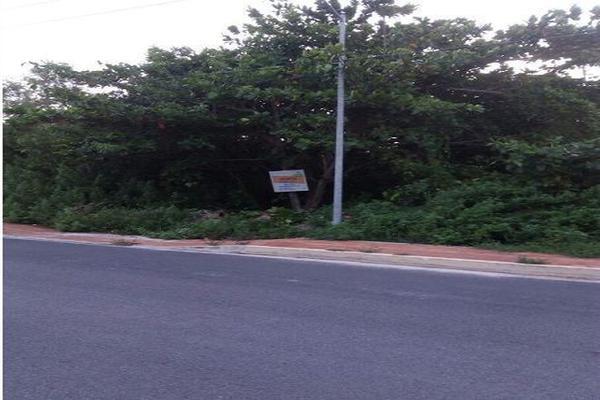 Foto de terreno habitacional en venta en  , punta sam, benito juárez, quintana roo, 15958429 No. 10