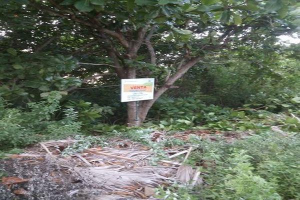 Foto de terreno habitacional en venta en  , punta sam, benito juárez, quintana roo, 15958429 No. 11