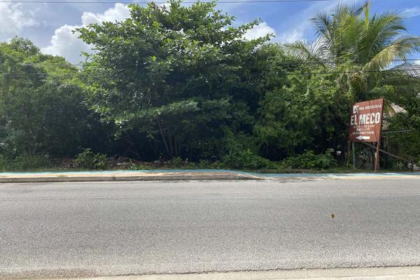 Foto de terreno habitacional en venta en  , punta sam, benito juárez, quintana roo, 0 No. 03