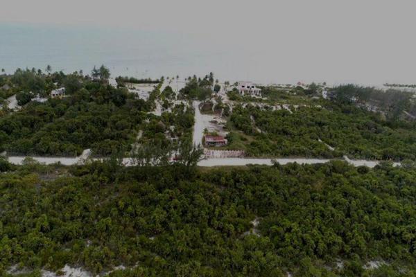 Foto de terreno habitacional en venta en  , punta sam, benito juárez, quintana roo, 8136916 No. 01