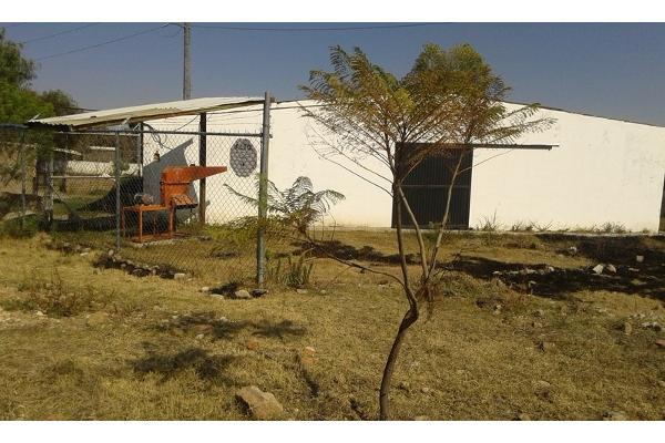Foto de rancho en venta en  , purísima del progreso, irapuato, guanajuato, 2733129 No. 04