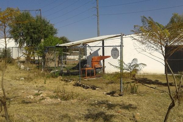 Foto de rancho en venta en  , purísima del progreso, irapuato, guanajuato, 2733129 No. 05