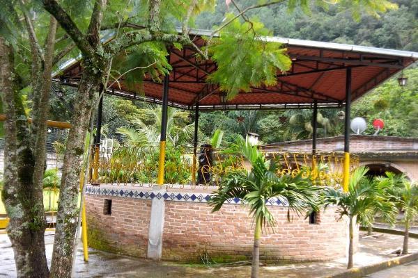 Foto de casa en venta en quinta san judas tadeo , tlilapan, tlilapan, veracruz de ignacio de la llave, 6204329 No. 02