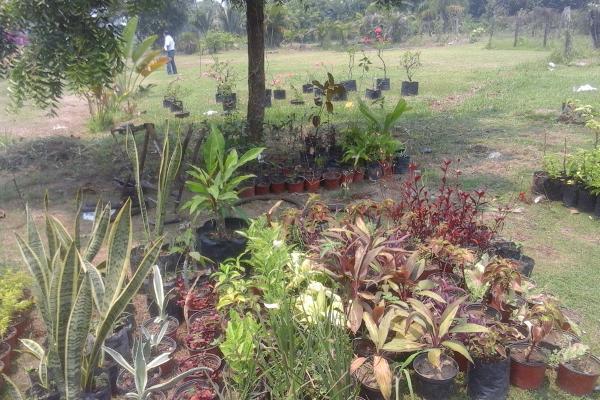 Foto de terreno comercial en venta en ranchería buena vista , buena vista 3a sección (boca de escoba), centro, tabasco, 3464798 No. 06