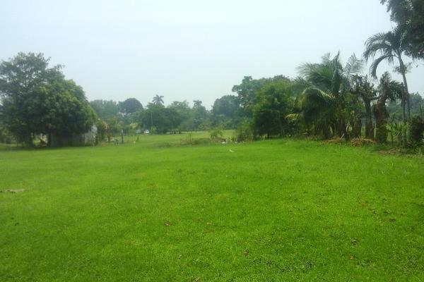 Foto de terreno comercial en venta en ranchería buena vista , buena vista 3a sección (boca de escoba), centro, tabasco, 3464798 No. 07