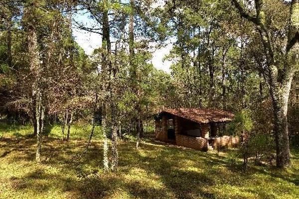 Foto de casa en venta en rancho club los amigos , tapalpa, tapalpa, jalisco, 6129232 No. 05