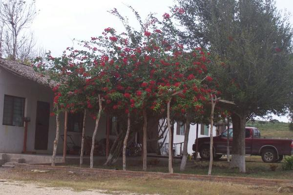 Foto de rancho en venta en rancho ejido los bellos , soto la marina centro, soto la marina, tamaulipas, 5407393 No. 02