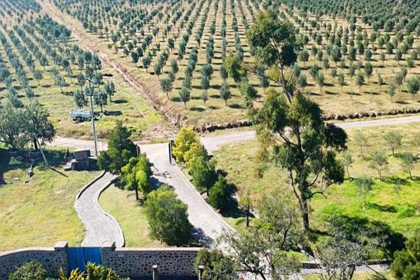Foto de rancho en venta en rancho el moral s/n , la concepción jolalpan, tepetlaoxtoc, méxico, 6152643 No. 04