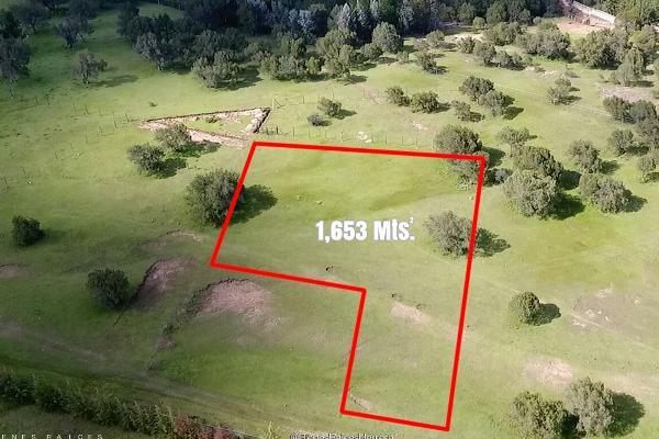 Foto de terreno habitacional en venta en rancho la colmena , huasca de ocampo centro, huasca de ocampo, hidalgo, 6153323 No. 02