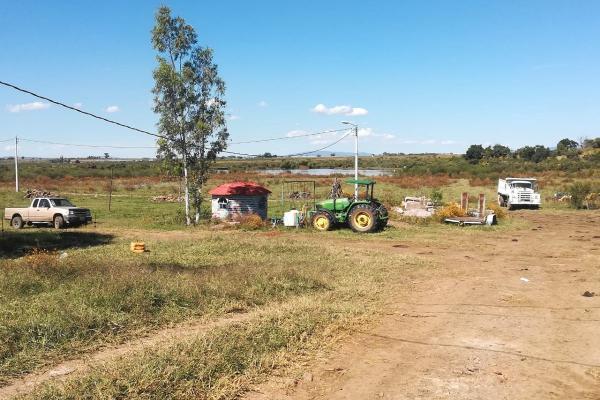 Foto de rancho en venta en rancho palo verde , zapotlanejo, zapotlanejo, jalisco, 14257297 No. 02