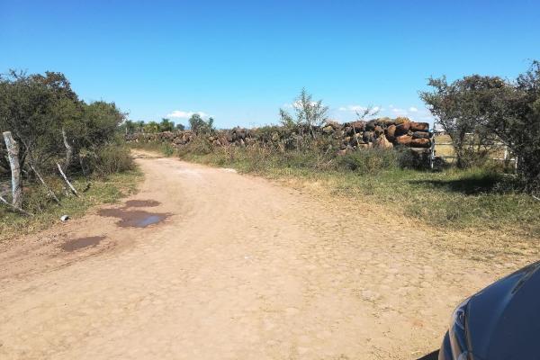 Foto de rancho en venta en rancho palo verde , zapotlanejo, zapotlanejo, jalisco, 14257297 No. 05