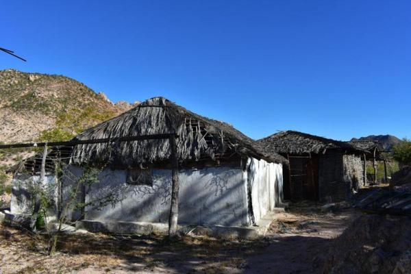 Foto de terreno habitacional en venta en rancho san juan , cabo pulmo, los cabos, baja california sur, 5978855 No. 03