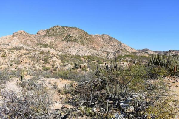 Foto de terreno habitacional en venta en rancho san juan , cabo pulmo, los cabos, baja california sur, 5978855 No. 04