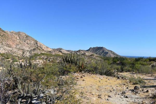 Foto de terreno habitacional en venta en rancho san juan , cabo pulmo, los cabos, baja california sur, 5978855 No. 05