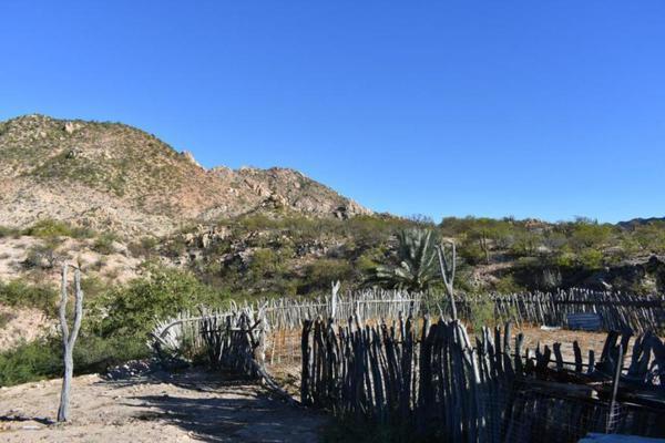 Foto de terreno habitacional en venta en rancho san juan , cabo pulmo, los cabos, baja california sur, 5978855 No. 07
