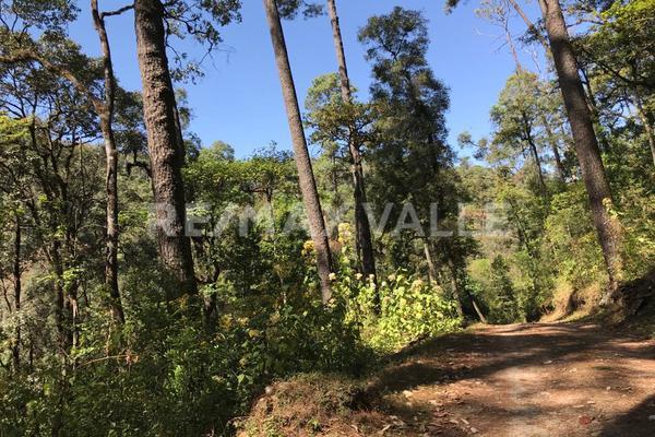 Foto de terreno habitacional en venta en rancho san simón , san simón el alto, valle de bravo, méxico, 5860244 No. 04