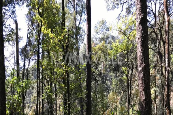 Foto de terreno habitacional en venta en rancho san simón , san simón el alto, valle de bravo, méxico, 5860244 No. 06