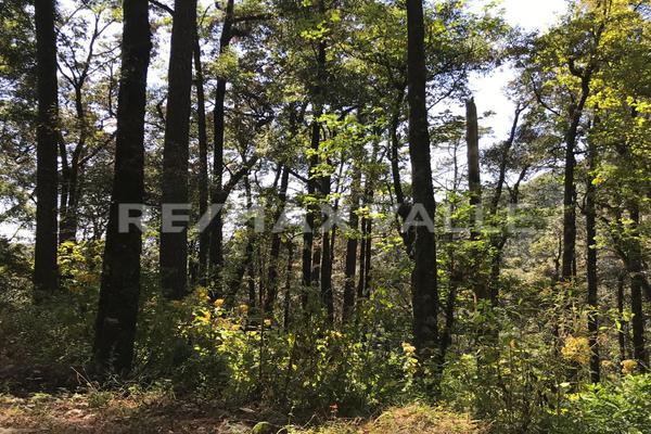 Foto de terreno habitacional en venta en rancho san simón , san simón el alto, valle de bravo, méxico, 5860244 No. 07