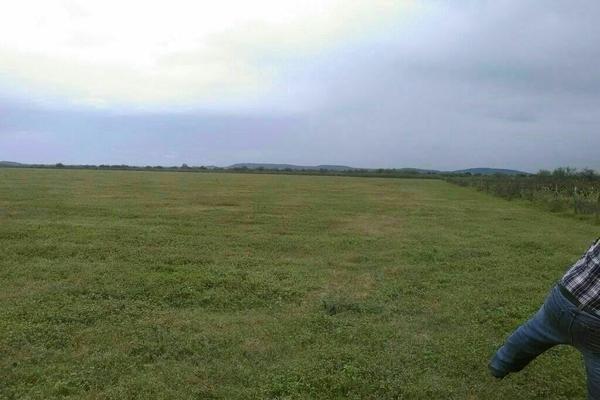 Foto de terreno comercial en venta en rancho topila , topila, tampico alto, veracruz de ignacio de la llave, 5926119 No. 02