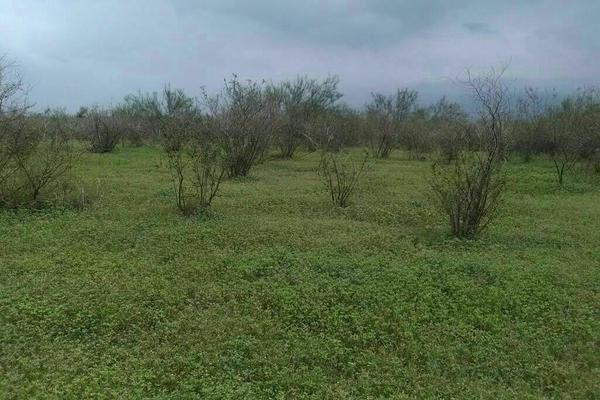 Foto de terreno comercial en venta en rancho topila , topila, tampico alto, veracruz de ignacio de la llave, 5926119 No. 05
