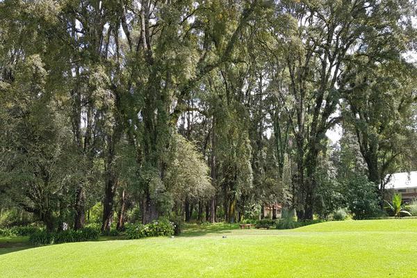 Foto de terreno habitacional en venta en rancho viejo , cieneguilla de gonzález, temascaltepec, méxico, 5835077 No. 09