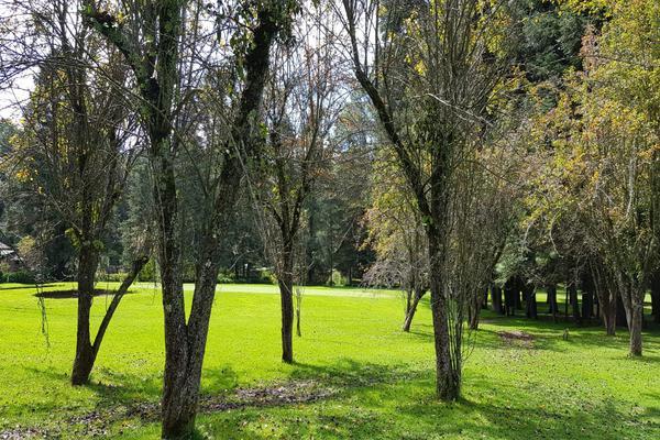 Foto de terreno habitacional en venta en rancho viejo , cieneguilla de gonzález, temascaltepec, méxico, 5835077 No. 10