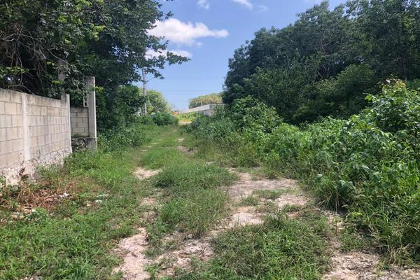 Foto de terreno habitacional en venta en rancho viejo , punta sam, benito juárez, quintana roo, 17140796 No. 05
