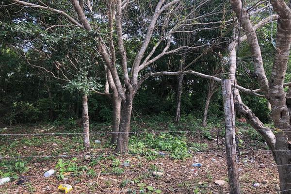 Foto de terreno habitacional en venta en rancho viejo , punta sam, benito juárez, quintana roo, 17140796 No. 06