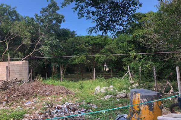 Foto de terreno habitacional en venta en rancho viejo , punta sam, benito juárez, quintana roo, 17140796 No. 07