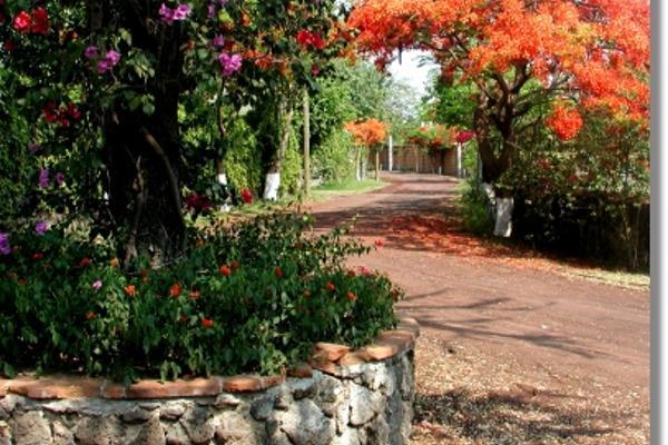 Foto de casa en venta en  , real de tezoyuca, emiliano zapata, morelos, 2640387 No. 05