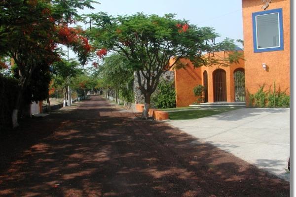 Foto de casa en venta en  , real de tezoyuca, emiliano zapata, morelos, 2640387 No. 06