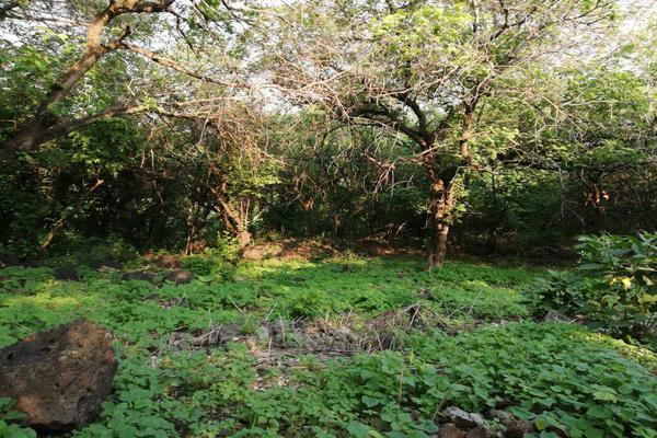 Foto de terreno comercial en venta en  , real del puente, xochitepec, morelos, 5679957 No. 01