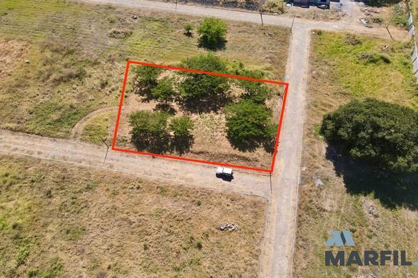 Foto de terreno habitacional en venta en  , real nogueras, comala, colima, 18467343 No. 04
