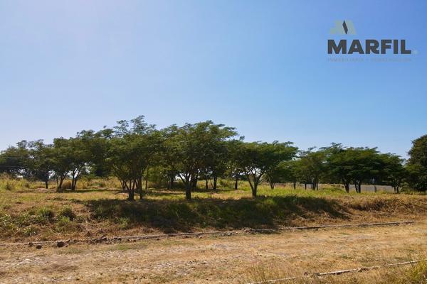 Foto de terreno habitacional en venta en  , real nogueras, comala, colima, 18467343 No. 06