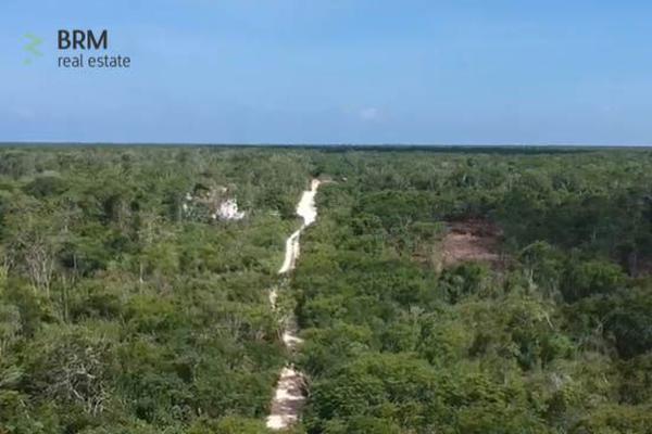 Foto de terreno habitacional en venta en region 15 manzana 162 lote 7 , tulum centro, tulum, quintana roo, 0 No. 01