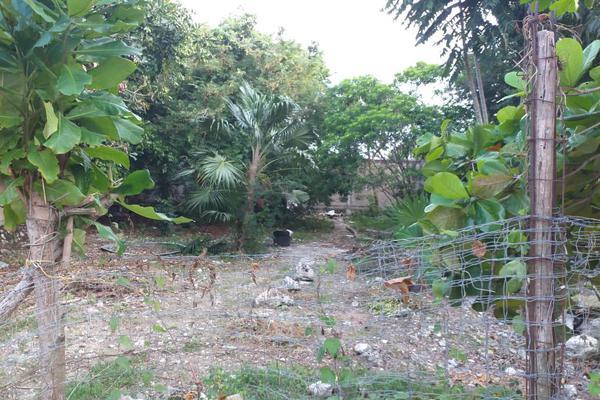 Foto de terreno habitacional en venta en  , región 510, benito juárez, quintana roo, 18801182 No. 06